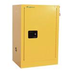 45 L Flammable Storage Cabinet LFSC-D11